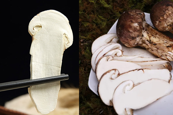 松茸干去皮好还是不去皮好,松茸是干的还是湿的更有营养